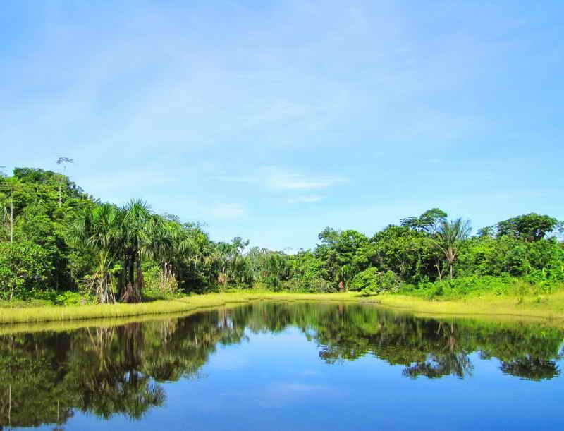 Лагуна на Амазонке